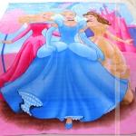 ผ้าห่ม Princess 2