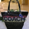 COACH HOLIDAY RHINESTONE TOTE 2011 LIMITED EDITION # 17144