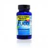 *พร้อมส่ง*Fuco Pure (1 กระปุก) ฟูโก้เพียว (พุงยุบ แขนลด ขาเล็ก) ไม่ต้องอดอาหาร ไม่เกิดโยโย่เอ็ฟเฟ็ค