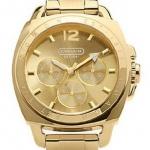 Coach 14501212 Quartz Chronograph Gold Tone Dial Stainless Steel (Men Watch)
