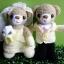ตุ๊กตาถัก คู่แต่งงาน <<< ขายแล้ว >>> thumbnail 1