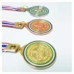 เหรียญรางวัลโลหะเซ็นต์หลุยส์ศึกษา