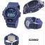 Casio G-Shock Limited model รุ่น DW-6900ZB-2 thumbnail 5