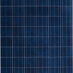 แผงโซล่าเซลล์ 300W Poly Crystalline