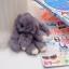 พวงกุญแจห้อยกระเป๋า ตุ๊กตากระต่ายหูยาว น่ารักๆๆ ขนกระต่ายแท้ นุ่มมากๆ thumbnail 16