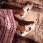 รูปรองเท้าแบรนด์เนมสำหรับPreorderสวยๆแบบใหม่ๆค่ะ thumbnail 803
