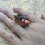 แหวนพญานาค รัดพลอย thumbnail 6