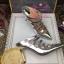 รูปรองเท้าแบรนด์เนมสำหรับPreorderตามรอบที่กำหนด thumbnail 318