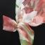 vintage dress :ออริจินอลวินเทจ ผ้าแก้วพิมพ์ลาย แพทเทิร์นเข้ารูป แต่งซิบหลัง พร้อมซับในเต็มตัว thumbnail 3