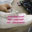 รองเท้าผ้าใบแบรนเนมเกรดพรีเมี่ยมส่งคู่ล่ะ 100 บาท thumbnail 1