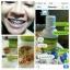 น้ำยาบ้วนปาก แบมบู Bamboo mouthwash ของแท้100% สินค้ามีพร้อมส่ง thumbnail 5
