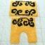 ต้นรักสีเหลือง thumbnail 4