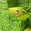 สบู่ผิวกาย สูตรเร่งผลัดเซลล์ผิว (กล่องเขียว) 1 กล่อง thumbnail 2