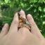 แหวนพญานาคราช thumbnail 5