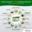 Cho 12 โช ทเวลฟ์ by เนย โชติกา ผลิตภัณฑ์เสริมอาหาร และควบคุมน้ำหนัก สูตรใหม่ thumbnail 3