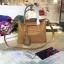 กระเป๋าแบรนด์เนม ฮิตๆแบบใหม่ๆสวยๆPreorder thumbnail 319