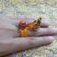 แหวนนาคาเปิดทรัพย์ thumbnail 6
