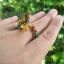 แหวนพญานาคราช thumbnail 6