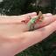 แหวนพญานาคพลอยนพเก้า thumbnail 3