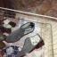 รูปรองเท้าแบรนด์เนมสำหรับPreorderสวยๆแบบใหม่ๆค่ะ thumbnail 1083
