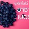 อาซาอิเบอร์รี่ (Acai berry) ดียังไง ?