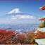 T018 จิ๊กซอว์ ลายทั่วไป วิว หมาแมว เรือ ทะเล ภูเขา Jigsaw Puzzle 500 ชิ้น thumbnail 1
