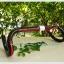 แฮนด์หมอบ Cycling king CARBON /สีดำแถบแดง