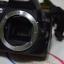 (่Sold out) กล้อง Nikon D3100+Lens Kit 18-55 อุปกรณ์ กระเป๋า กล้องศูนย์ thumbnail 3
