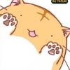 โลกบ๊องแบ๊วของแมวตัวกลม เล่ม 4