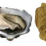 สารสกัดหอยนางรม (Oyster Extract)
