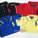 1026 Cotton Polo Shirt by Polo Ralph - กรม/แดงเข้ม/น้ำเงิน/เหลือง ขนาด 6-8,8-10,10-12 ปี