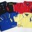1026 Cotton Polo Shirt by Polo Ralph - กรม/แดงเข้ม/น้ำเงิน/เหลือง ขนาด 6-8,8-10,10-12 ปี thumbnail 1