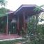 ขายบ้านไม้สัก 3หลัง พื้นที่ 10 ไร่ บางไทร อยุธยา thumbnail 2