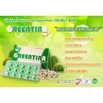 Greentina plus กรีนติน่า พลัส