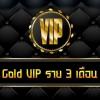 Gold VIP ราย 3 เดือน