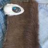 กระเป๋าสตางค์ยาว ขนวัวแท้ Style Cowboy รุ่น กระดุ่มสีตะค็อย สำเนา
