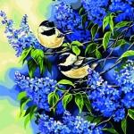 """""""นกน้อยกับดอกไม้"""""""