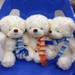 ตุ๊กตาหมีมีผ้าพันคอ ขนาด 9 นิ้ว (แลกซื้อสำหรับยอดซื้อ 1000 บาทขึ้นไป)