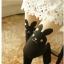 ถุงน่องแฟร์ชั่นลาย กระต่ายแอ๊บ และ หมีน้อย thumbnail 12