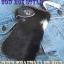 กระเป๋าสตางค์ยาว ขนวัวแท้ Style Cowboy รุ่น กระดุ่มสีตะค็อย thumbnail 1