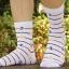 S104**พร้อมส่ง** (ปลีก+ส่ง) ถุงเท้าแฟชั่นเกาหลีผู้ชาย ข้อยาว เนื้อดี งานนำเข้า(Made in china) thumbnail 12